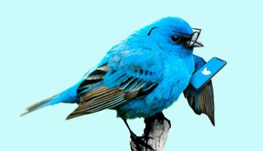 無料で使える Twitter アカウント運用ツール「SocialDog(ソーシャルドッグ)」使ってみました~